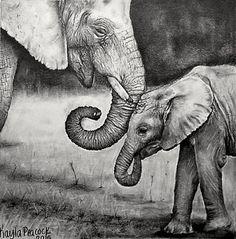 Elephants by Kayla Peacock Elephant Drawing Elephant Art Elephant Sketch Baby Elephant Drawing, Elephant Sketch, Elephant Love, Elephant Art, Animal Sketches, Art Drawings Sketches, Animal Drawings, Graphite Art, Graphite Drawings