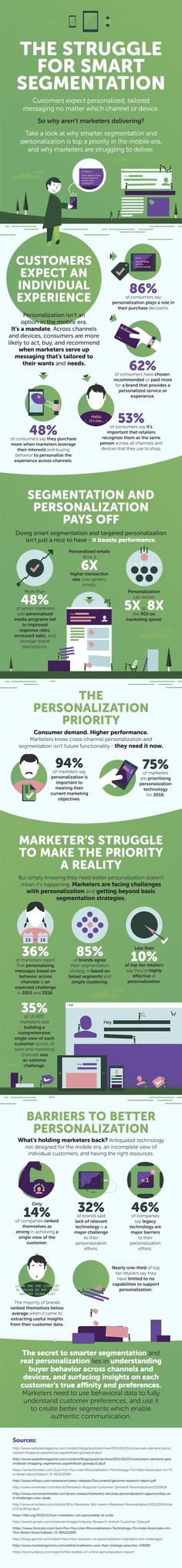 The Struggle for Smart Segmentation #Infographic #Advertising #Marketing