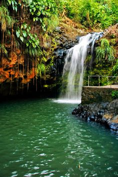 Grenada website. To see..... 7 sisters waterfall ,Annandale Falls, Victoria Falls and buy spices. Champagne and lobster snorkel