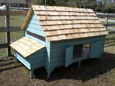 My Pet Chicken, Easy Chicken Coop, Chicken Home, Portable Chicken Coop, Chicken Coop Plans, Building A Chicken Coop, Chicken Runs, Small Chicken, City Chicken