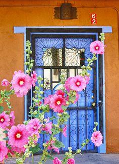 door,bright garden colours