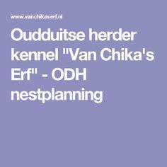 "Oudduitse herder kennel ""Van Chika's Erf"" - ODH nestplanning"