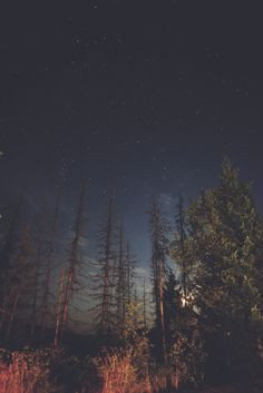 Our Beautiful World Beautiful World, Beautiful Places, All Nature, Foto Art, To Infinity And Beyond, Adventure Is Out There, Night Skies, The Great Outdoors, Wonders Of The World
