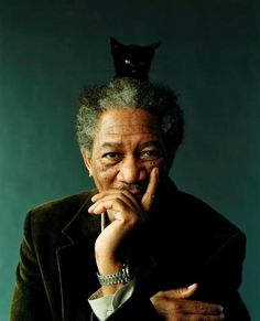 Cat Hat for Morgan Freeman