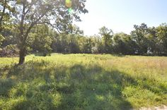 Desirable building lot (3.6+/- acres) in prestigious Deer Trail Estates subdivision. Site has been tested and approved for a basement home and ready to build. The results of a positive perk test are available upon request in Bolivar MO