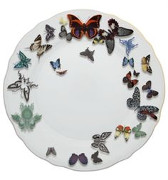 Lacroix Butterfly P. - Dinner Plate