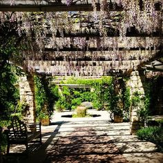 Delicieux English Oak Meadow, Chicago Botanical Gardens   Gardens To Visit!    Pinterest   Gardens, Chicago And English