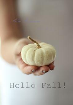 Blue Hortensia: Povratak..Hello Fall!