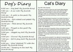 cats & dogs-this is so true!