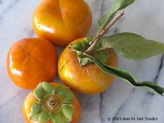Persimmons ~ Fuyu persimmons ~ from the Farmers' Market this morning. Photo © 2013 Ann M. Del Tredici