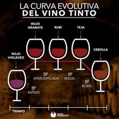 La vida de un vino. - Katamaniacos