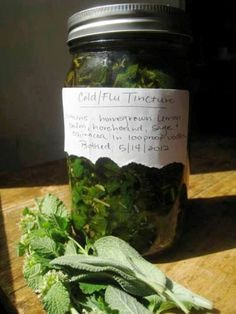 How To Make A Cold and Flu Tincture | Health & Natural Living