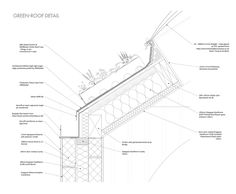 10 Arch Det Green Roof Ideas Green Roof Roof Roof Detail