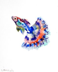 Guppy, original watewrcolor painting, blue red bright, 10 X 8 in, watercolor fish,