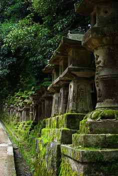 kasuga shinto shrine