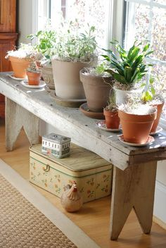 indoor window garden, bench in front of the non-sliding part of a sliding door.