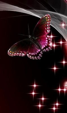 Download 480x800 «Butterfly» Cell Phone Wallpaper. Category: Art & Graphics