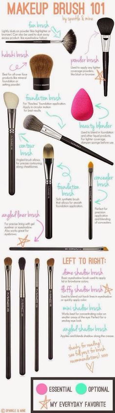 Chantel Bernal Beauty: Makeup Brush 101