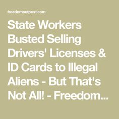 State Workers Busted Selling Drivers' Licenses & ID Cards to Illegal Aliens - But That's Not All! - Freedom Outpost