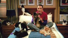 "Pin for Later: 20 Facial Expressions Sheldon Cooper Has Perfected on The Big Bang Theory The ""Not Afraid to Be a Cat Lady"""