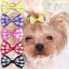 Small Dog Hair Bow: Little Dog Plaid Hair Bows – Small Dog Mall, Good Things for Little Dogs Dog Hair Bows, Dog Bows, Dog Accesories, Pet Accessories, Dog Clothes Patterns, Pet Clothes, Dog Clothing, Dog Crafts, Dog Sweaters