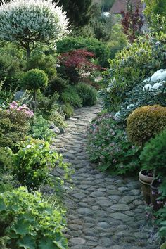 HAVETID natural stone path edged by perennials in various shades and textures