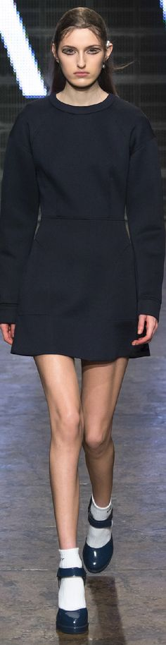 Fall 2015 Ready-to-Wear DKNY