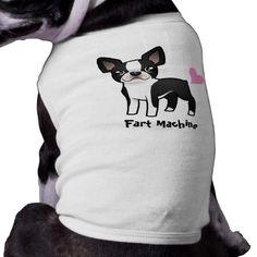 Fart Machine (boston terrier)
