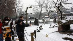 Winterprogramm der Zooschule Heidelberg