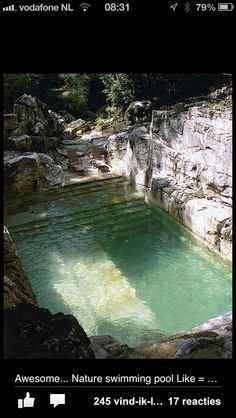Awesome nature pool