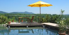 Schwimmteich Bilder: Pool for Nature