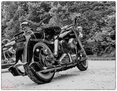 Fishtails - Shovelhead Harley