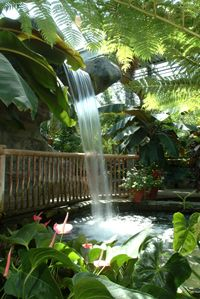 This place is near and dear to my heart. @Cambridge Butterfly Conservatory