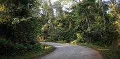 Road to Nam Et-Phou Louey NPA