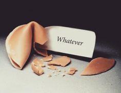 Whatever - Estudio Javier Jaén