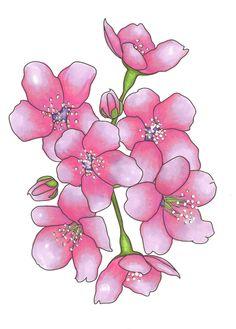 My art - Cherry Blossoms