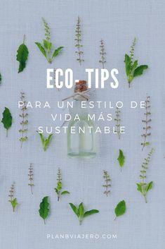 Positive Mind, Consumerism, Graphic Design Posters, Green Life, Life Organization, Zero Waste, Eco Friendly, Improve Yourself, Life Hacks
