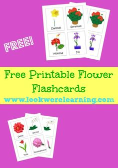 Grab our free printable flower flashcards and get great spring learning ideas in this week's Family Fun Friday! Spring Activities, Classroom Activities, Activities For Kids, Nature Activities, Infant Activities, Flashcards For Kids, Worksheets For Kids, Printable Flashcards, Spanish Lessons For Kids