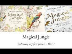 Magical Jungle - Colouring my first parrot! - Part 4 - YouTube