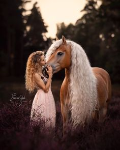 Horse Girl Photography, Equine Photography, Animal Photography, Beautiful Creatures, Animals Beautiful, Cute Animals, Cute Horses, Pretty Horses, Horse Photos