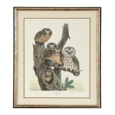 "John A. Ruthven Signed Limited Edition Offset Lithograph ""Saw Whet Owls"""