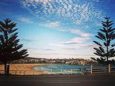 #memoriesofaustralia #australia  #sydney #bondi #bondibeach #bondibeachsydney #surf #bondisurfing #surfchicks #surfingaustralia #beach #newsouthwales #newsouthwalesaustralia #travelingtheworld #adventureculture #worldsfavouritecity #travel #travels #traveling #backpackers #backpackaustralia #backpacking #ilovesydney #adventuretheworld by travel.ed http://ift.tt/1KBxVYg