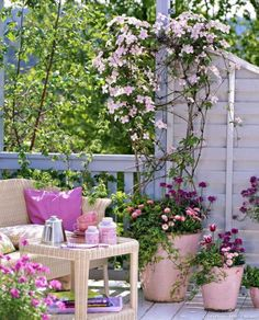 Decorating a balcony in shabby-chic style - ideas for the romantic .- Balkon im Shabby-Chic-Stil dekorieren – Ideen für den romantischen Look Balcony design Clematis pink ceramic tubs -