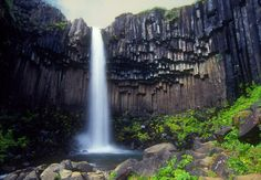 Svartifoss waterfall and columnar basalt, Skaftafell National Park, Iceland