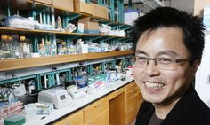 Dendrimer technology gets a grip on cell proteins, could improve cancer treatment