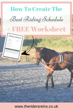 Are you struggling to get your riding schedule perfected? Here are the basics to getting a great schedule PLUS a FREE Work Sheet! Equestrian Outfits, Equestrian Style, Equestrian Fashion, Horse Information, Work Sheet, Riding Hats, Types Of Horses, Horse Training, Training Tips