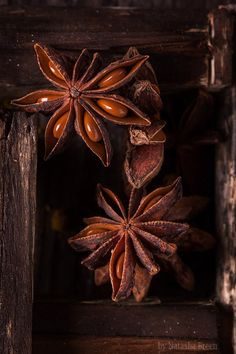 Anise - Close-up of anise in old wooden box