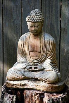 Buddha always brings me peace.