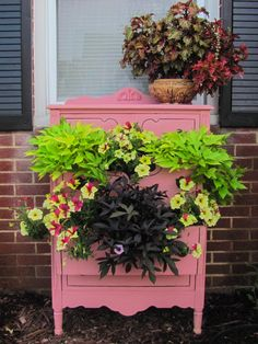 Curb appeal on a budget.  Using a found dresser, painted bubble gum pink, as a planter. (recycled, upcycled garden furniture)