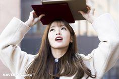 Oh My Girl's Arin graduation photoshoot by Naver x Dispatch. South Korean Girls, Korean Girl Groups, Arin Oh My Girl, Graduation Photoshoot, View Image, Mini Albums, Kpop Girls, Female, Collection